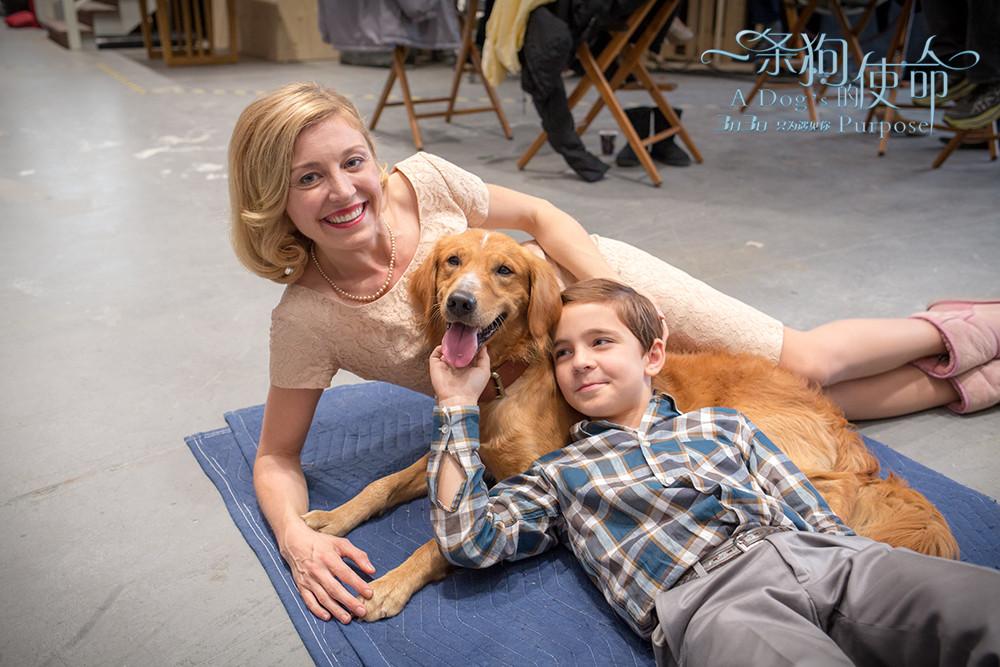 圣宠宠物协助宣传外国电影《一 条狗的使命》